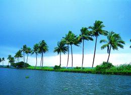 Tour Operators In Cochin, Kochi, Kerala